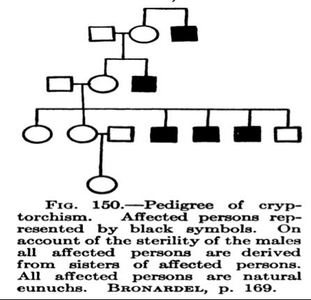 Figura 152, página 170, de Davenport, Charles Benedict. La herencia en Relación con la eugenesia. Nueva York: Henry Holt and Company, 1911.