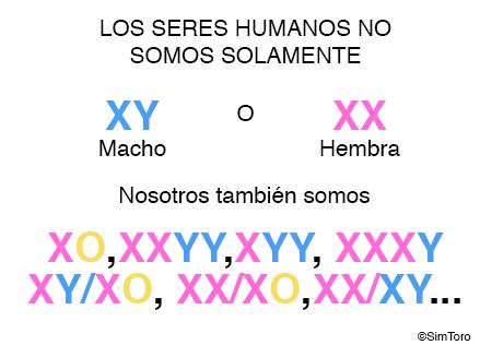 intersex2