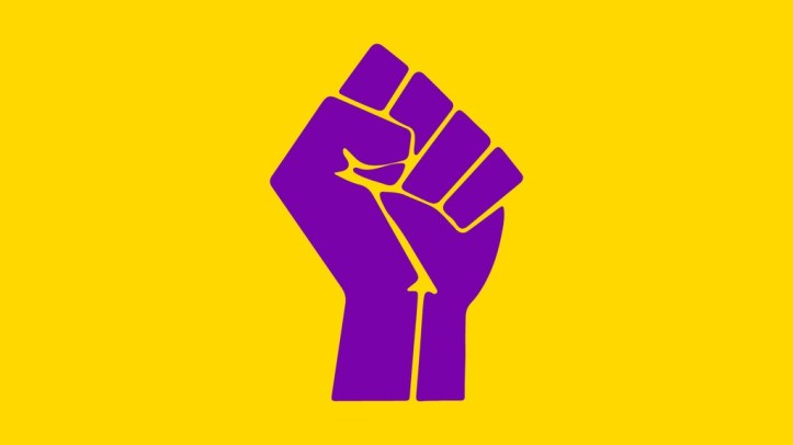 bandera intersex puño