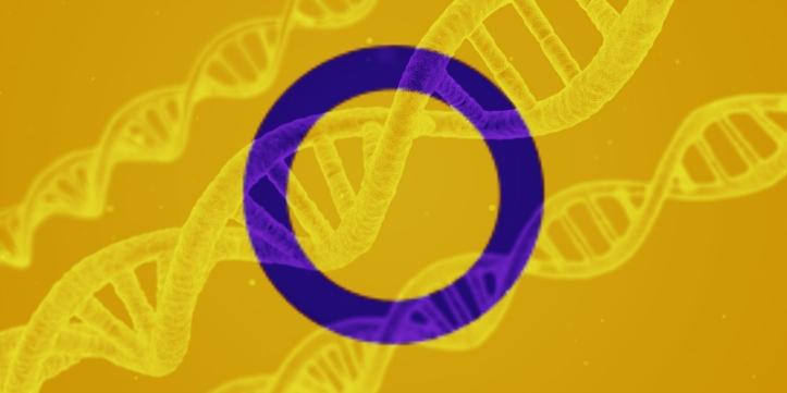intersex dna.jpg